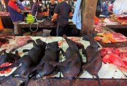 Inilah 11 Pasar Unik dan Aneh Yang Ada di Indonesia