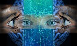 10 Fenomena Aneh yang Ada Dalam Otak