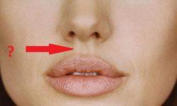 Tahukah Kamu? Apa Fungsi Lekukan di Bagian Tengah Bibir Atas
