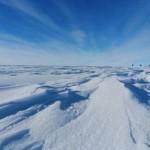 Es Antartika