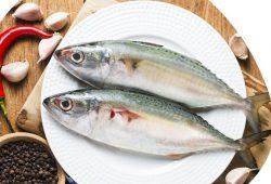 6 Khasiat yang Terkandung di Ikan Kembung