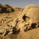 5 Hal Mengerikan yang akan Terjadi Jika Serangga Musnah dari Muka Bumi